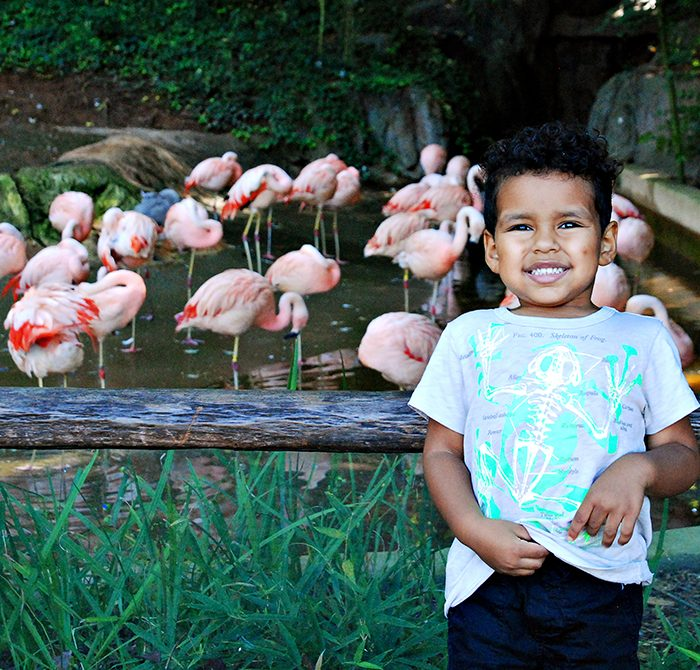 Adventure Cubs + The New Scaly Slimy Spectacular Exhibit at Zoo Atlanta