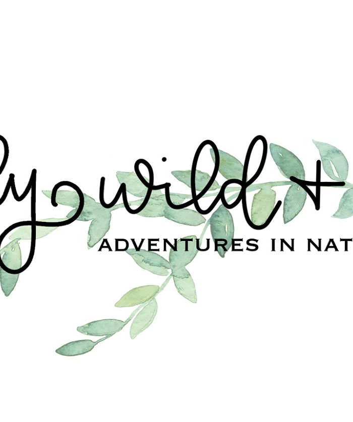 Recent Links and Blog Posts for Simply Wild + Well