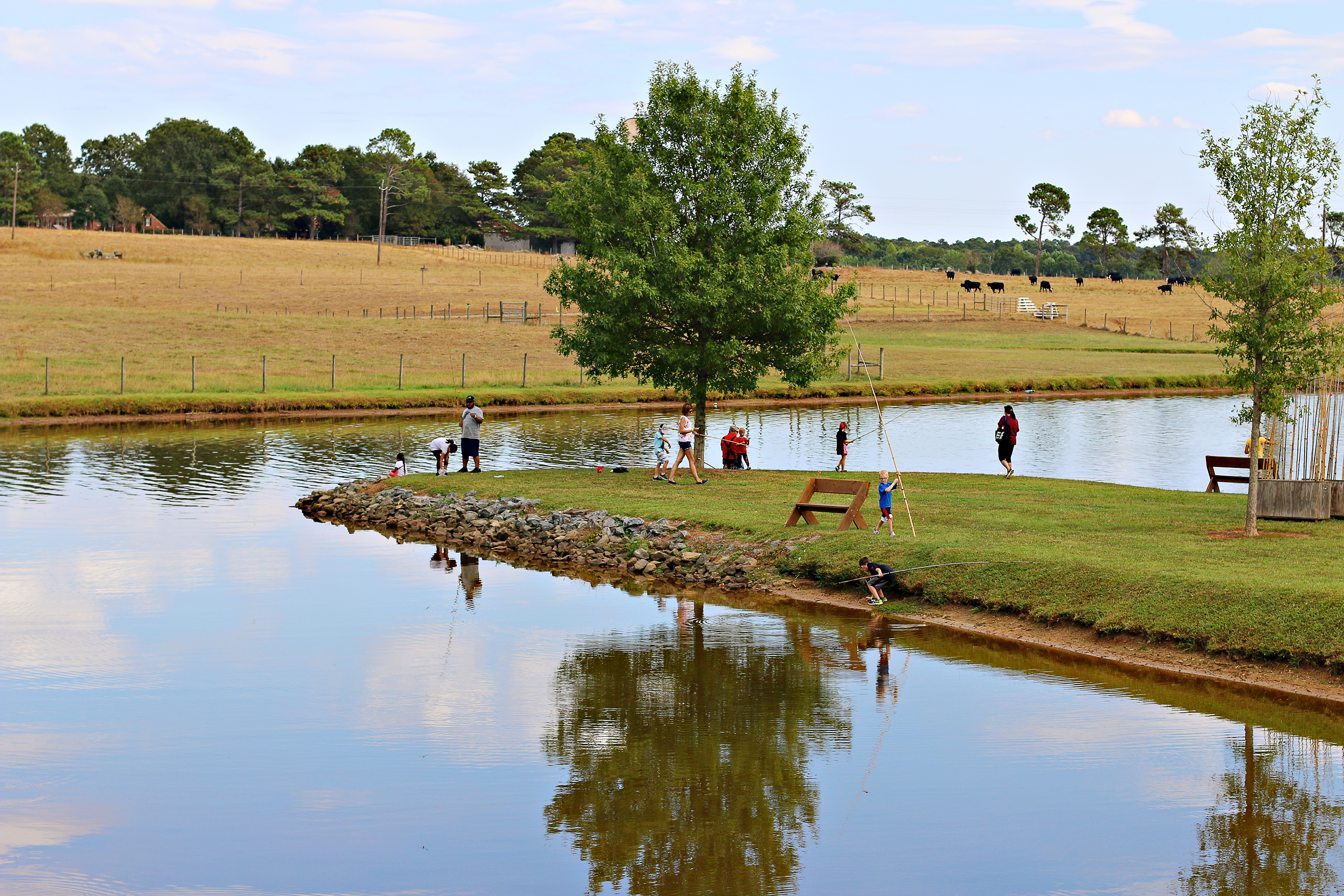 Families fishing at The Rock Ranch.