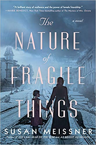 The cover of The Nature of Fragile Things by Susan Meissner.