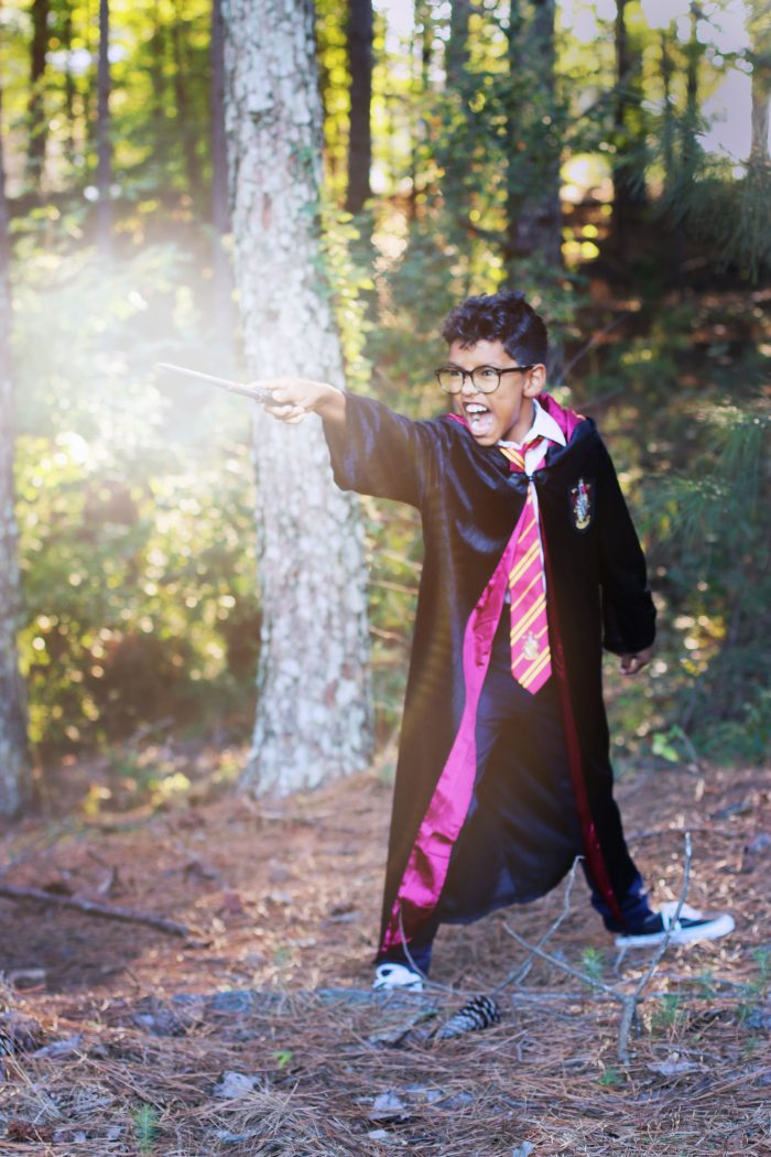 A Magical Harry Potter Halloween: Costumes, Treats, Crafts & More